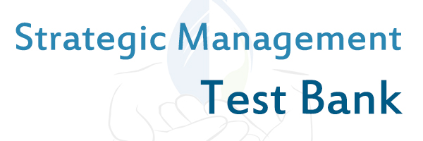 MGMT481TestBank